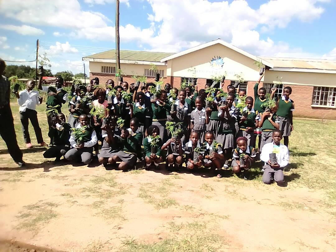 Students Planting Trees in Community